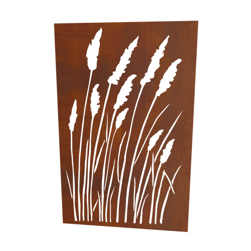 Gräser Gross Laser Sujet